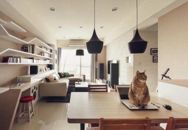 Інтер'єр для людей та кішок